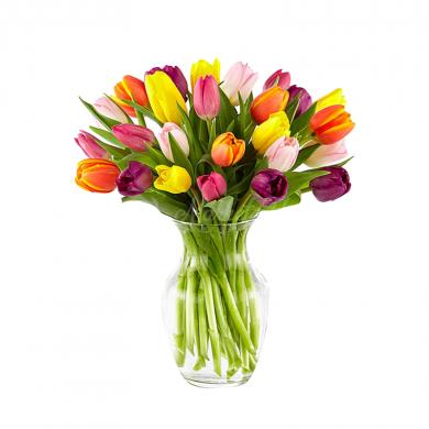 Букет «Tulip»