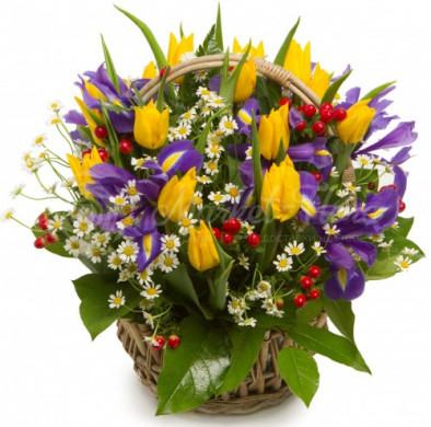 Корзина цветов «Росинка»